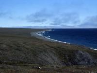 Landscape of Wrangel Island